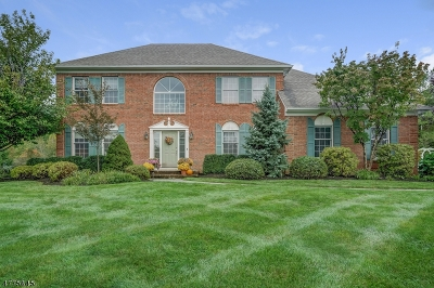 Chester Twp. Single Family Home For Sale: 3 Hardin Ct
