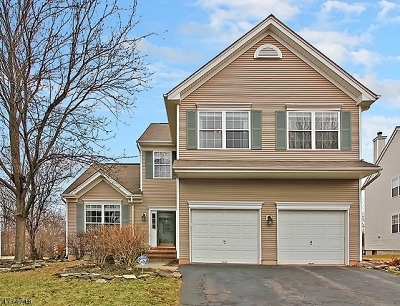 Bridgewater Twp. Single Family Home For Sale: 9 King Dr