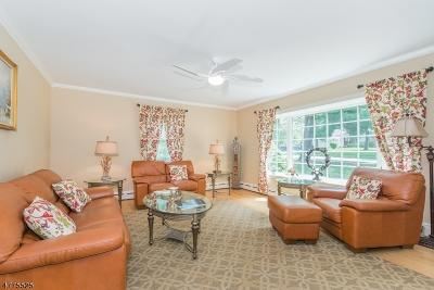 Livingston Twp. Single Family Home For Sale: 298 Hillside Ave