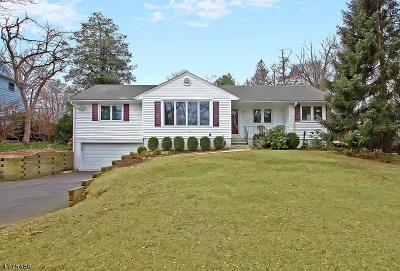Bernardsville Boro Rental For Rent: 125 Mount Airy Rd