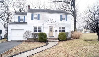 Bloomfield Twp. Single Family Home For Sale: 73 Ferncliff Rd