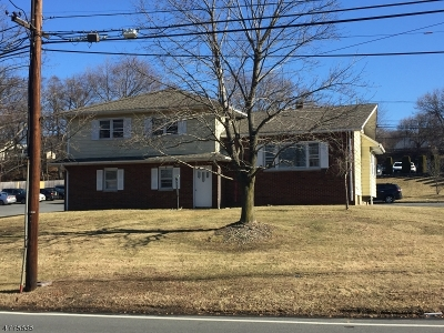 Woodland Park Single Family Home For Sale: 199 Browertown Rd