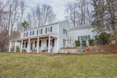 Morris Twp. Single Family Home For Sale: 20 Old Mendham Road