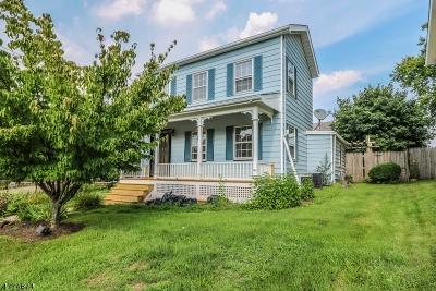 Flemington Boro Single Family Home For Sale: 61 Park Ave