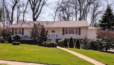 Clark Twp. Single Family Home For Sale: 96 Amelia Dr
