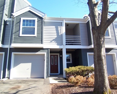 Bridgewater Twp. Condo/Townhouse For Sale: 253 Hedgerow Rd