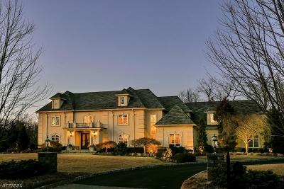 Livingston Twp. Single Family Home For Sale: 22 Trafalgar Dr