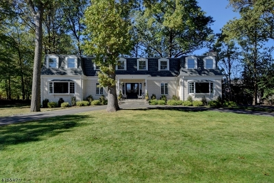 Scotch Plains Twp. Single Family Home For Sale: 9 Short Hills Ln