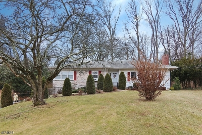 Mountainside Boro Single Family Home For Sale: 241 Appletree Ln