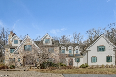 Chester Twp. Single Family Home For Sale: 3 Laurelwood Dr