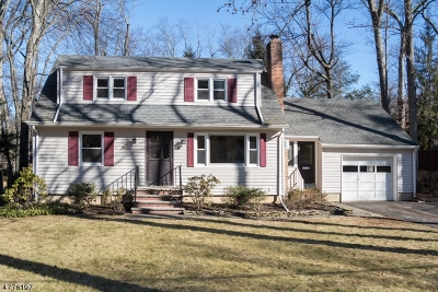 Berkeley Heights Single Family Home For Sale: 86 Cornell Ave