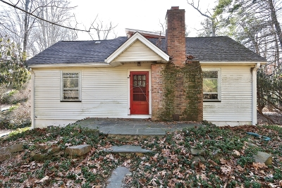 Berkeley Heights Single Family Home For Sale: 344 Emerson Ln