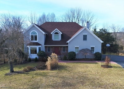 Clinton Twp. Single Family Home For Sale: 6 Chaucer Dr