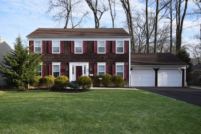 Scotch Plains Twp. Single Family Home For Sale: 2104 Maple View Ct