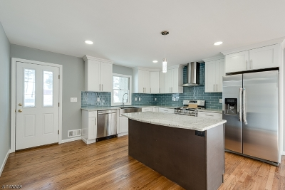 Parsippany Single Family Home For Sale: 211 N Beverwyck Rd
