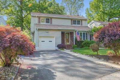 Springfield Twp. Single Family Home For Sale: 28 Elmwood Rd