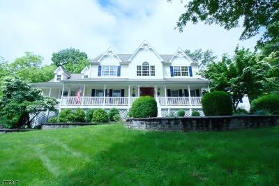 Raritan Twp. Single Family Home For Sale: 3 Alpine Pl