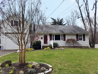 Berkeley Heights Single Family Home For Sale: 45 Maple Ave