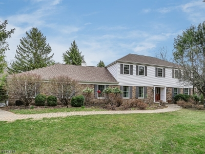 Mendham Boro, Mendham Twp. Single Family Home For Sale: 1 Muirfield Ln