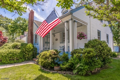 Cranford Twp. Single Family Home For Sale: 368 S Union Ave