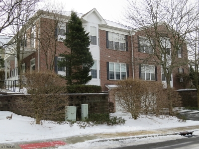 Wayne Twp. Condo/Townhouse For Sale: 1402 Four Seasons Dr #1402