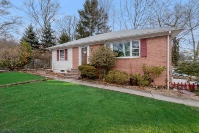 Millburn Twp. Single Family Home For Sale: 41 Cedar St