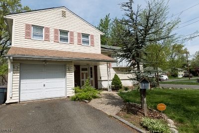 Springfield Twp. Single Family Home For Sale: 2 Joanne Way