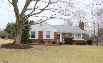 Clinton Town, Clinton Twp. Single Family Home For Sale: 26 Belvidere Ave