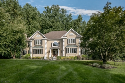 Chester Twp. Single Family Home For Sale: 7 Chilton Rd