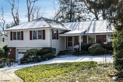 West Orange Twp. Single Family Home For Sale: 36 Brookside Rd