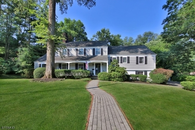 Millburn Twp. Single Family Home For Sale: 66 Canoe Brook Rd