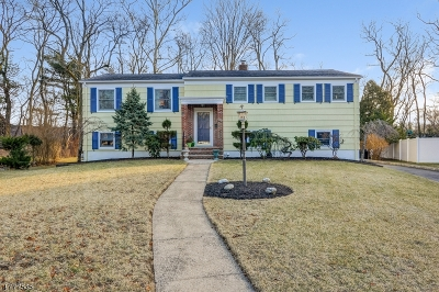 Millburn Twp. Single Family Home For Sale: 31 Oval Rd