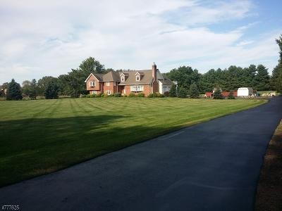 Readington Twp. Single Family Home For Sale: 23 Roosevelt Rd