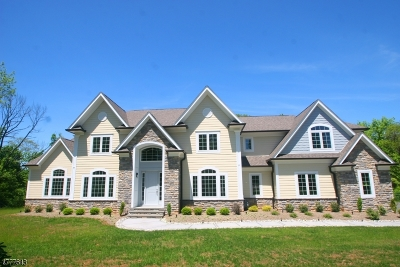 Bernards Twp. Single Family Home For Sale: 29 Fawn Ln