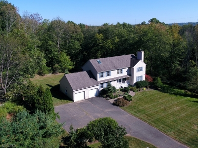 Long Hill Twp Single Family Home For Sale: 101 Morristown Rd
