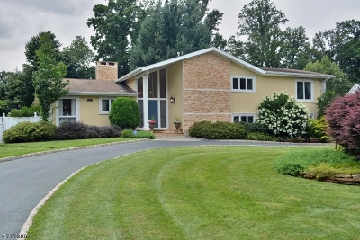 Wyckoff Twp. Single Family Home For Sale: 167 Fox Hollow Rd