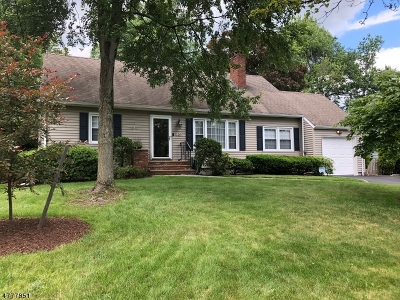 Summit Single Family Home For Sale: 104 Passaic Ave