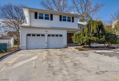 Springfield Twp. Single Family Home For Sale: 186 Meisel Ave