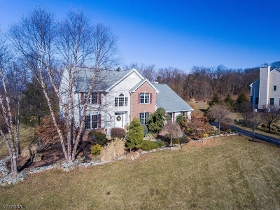 Glen Gardner Boro, Hampton Boro, Lebanon Twp. Single Family Home For Sale: 118 Junction Rd