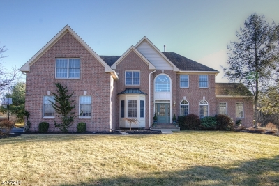 Readington Twp. Single Family Home For Sale: 21 Clearview Rd