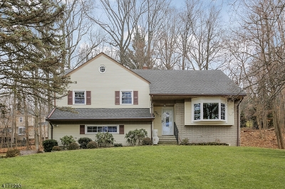 New Providence Boro Single Family Home For Sale: 154 Knollwood Dr