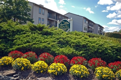 Hunterdon County Condo/Townhouse For Sale: 5 Sam Bonnell Dr