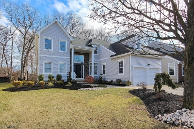 Scotch Plains Twp. Single Family Home For Sale: 23 Rambling Dr