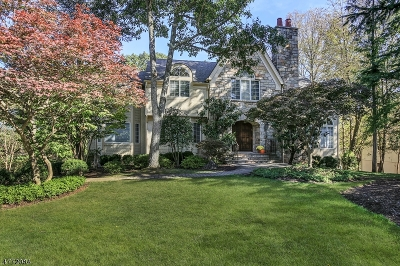 WATCHUNG Single Family Home For Sale: 25 Scott Drive