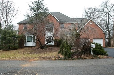 Edison Twp. Single Family Home For Sale: 18 Cutter Ave