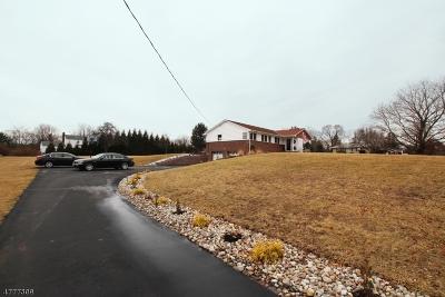 Flemington Boro Single Family Home For Sale: 166 Voorhees Corner Rd