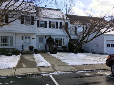 Mendham Boro, Mendham Twp. Condo/Townhouse For Sale: 29 Hampshire Dr