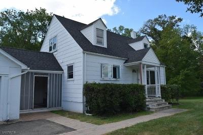 Bethlehem Twp. Single Family Home For Sale: 1110 Route 173