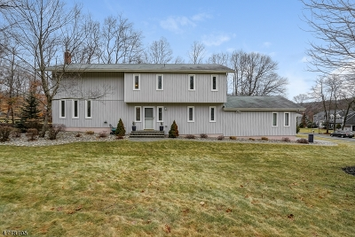 Randolph Twp. Single Family Home For Sale: 7 Rickland Dr