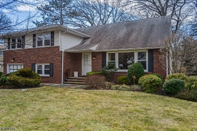 Springfield Twp. Single Family Home For Sale: 8 Woodside Rd